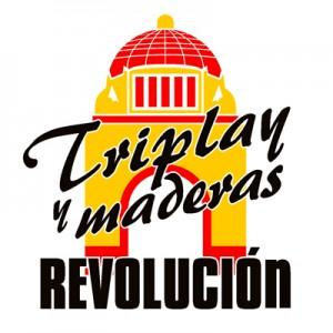 logorevolucion